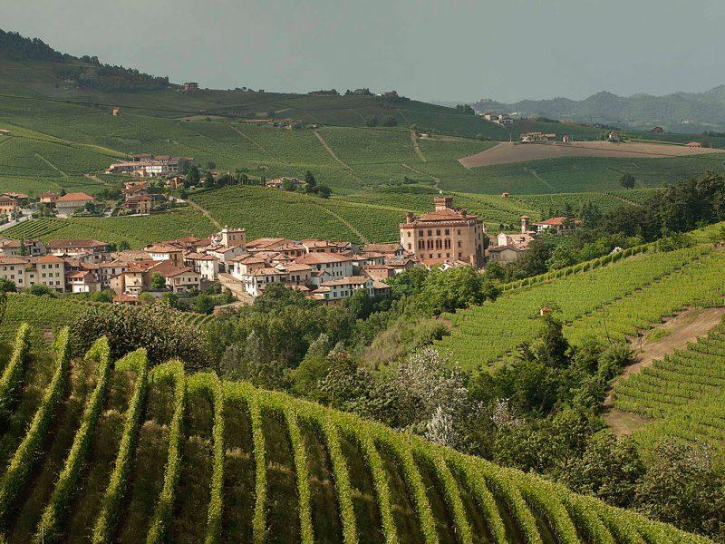 viaggi tour esperienze vino cantina formaggio vino cibo